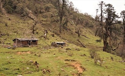 single tea house near jungle trail on route to Kanchhenjunga trek shows kanchenjunga trek difficulty in accomodation