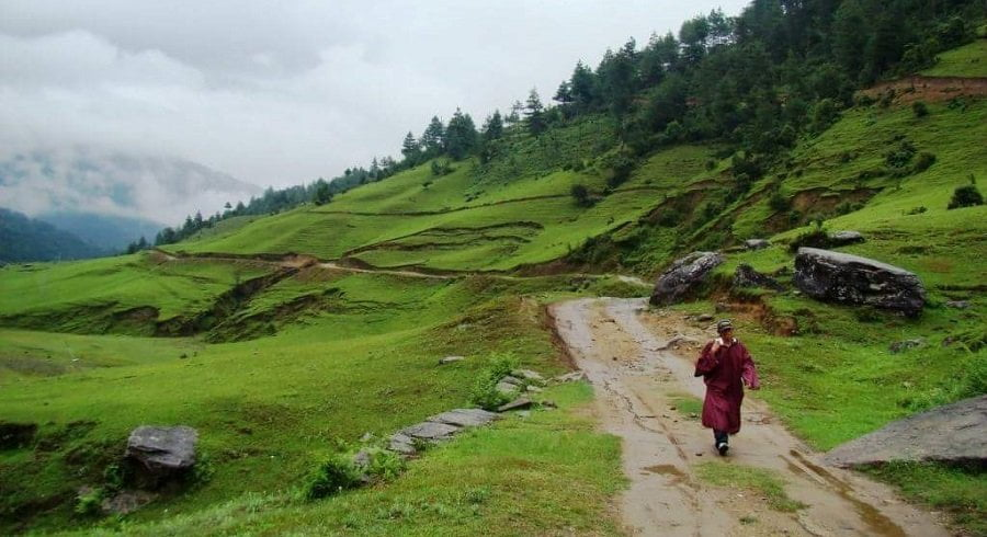 Lama walking on the trekking route of Shivalaya Kharanetar section of Numbur cheese circuit