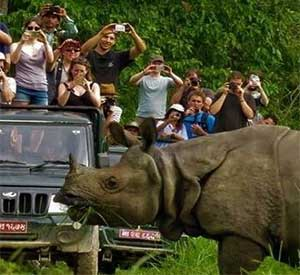 Wildlife safari is possible all around Nepal but destination chitwan is famous and old of all