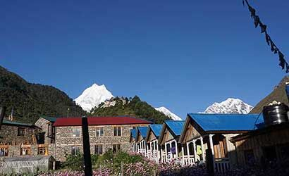 view of Mt manaslu seen from the village of Lho in our manaslu basecamp trek